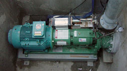 Large poultry plant relies on robust Vaughan chopper pump for turkey feather processing